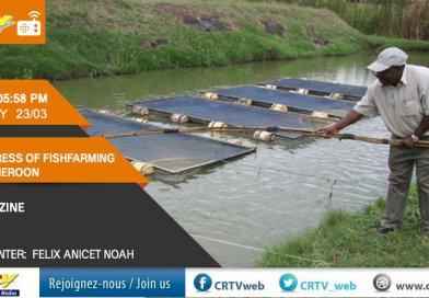 Fishfarming in Cameroon