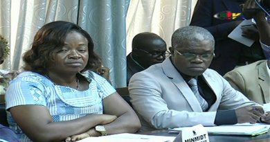Communication Gouvernementale: Agro-Industrie, un Santuaire de la Reconstruction Industrielle Nationale pour l'Emergence du Cameroun- 18 Avril 2018