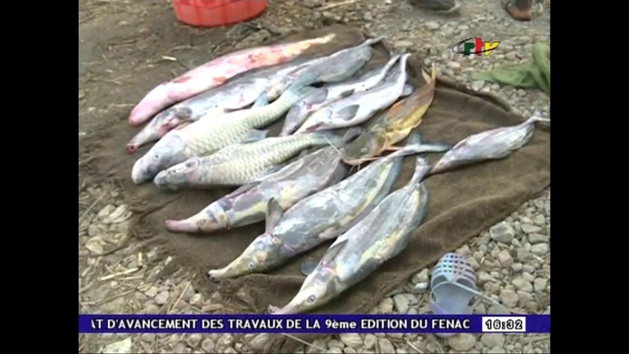 """MALI"" Chute sacrée Gbayas 09 Juillet 2018"