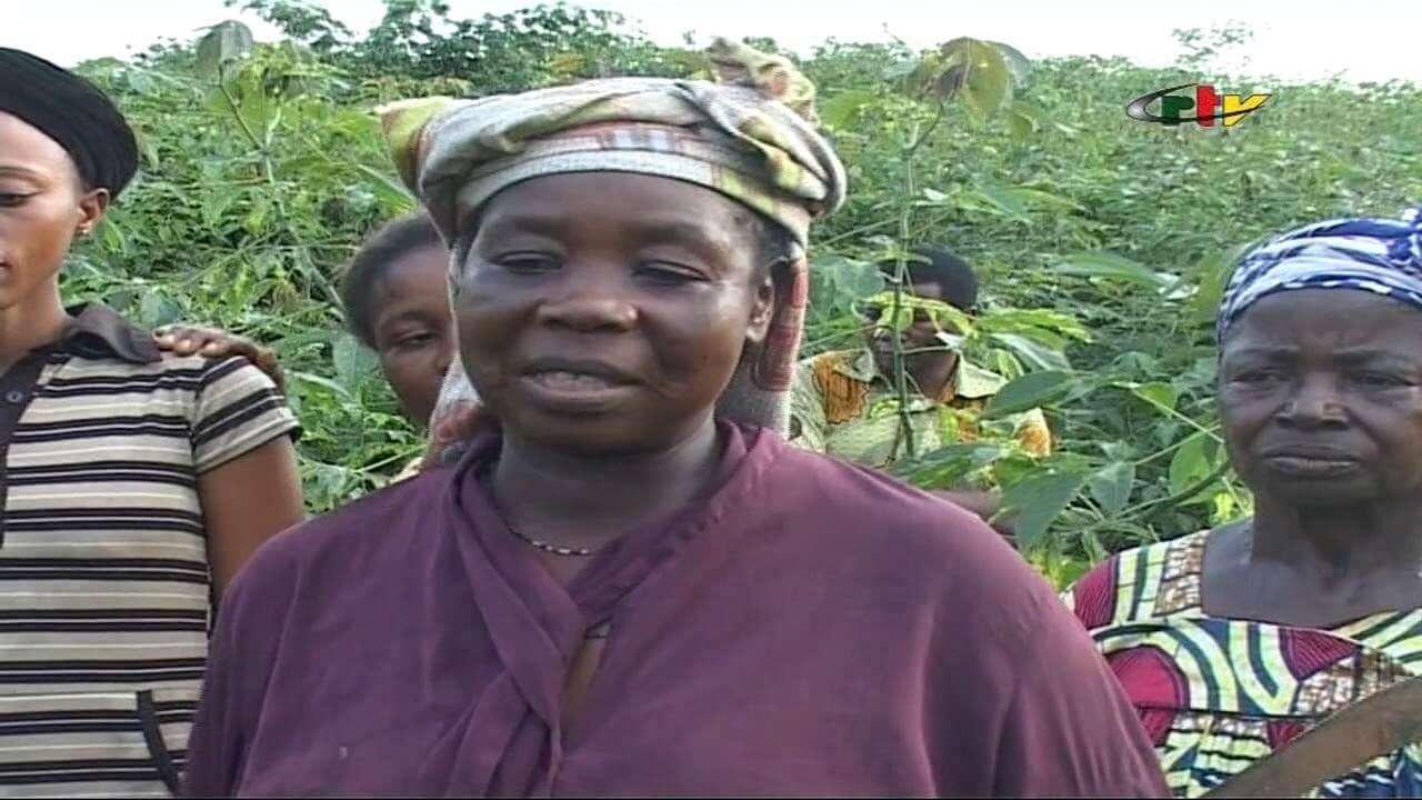 Magazine: Les Joies et Peines de L'Agriculture à l'Est-Cameroun – 13 Octobre 2018