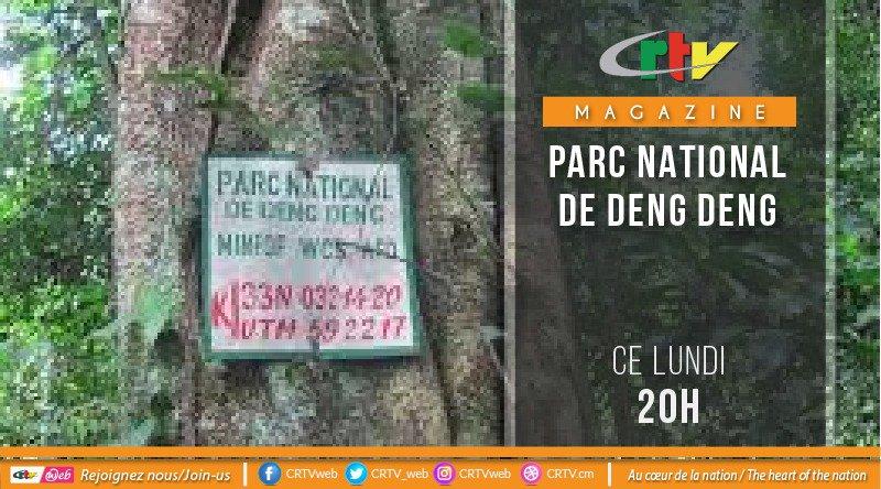 LE PARC NATIONAL DE DENG DENG