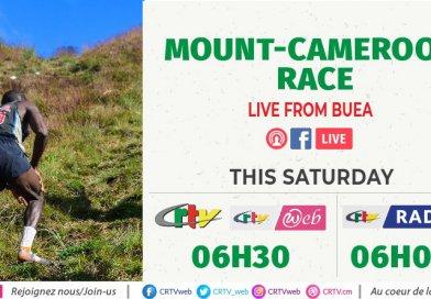 Ascension du mont Cameroun