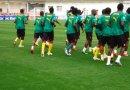 Classement FIFA septembre 2019 : le Cameroun fait du sur place