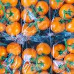 Intrus de Midi: la Vente des Emballages dans les Super-marchés- 15 Juillet 2019