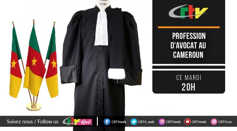 Profession d'avocat au Cameroun