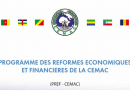 CEMAC: Some Of The 2019-2020 Perspective Of PREF-CEMAC In The CEMAC Zone